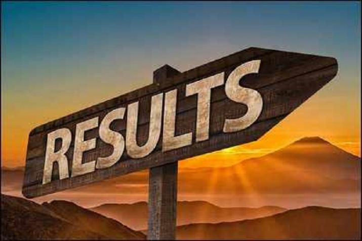 Rajasthan BSTC Allotment Result how to check