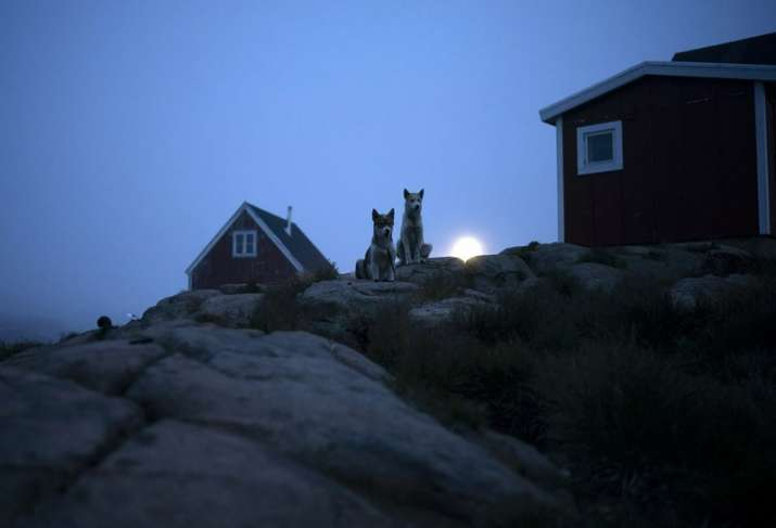 India Tv - Greenland is Melting: Pictures from Atlantic show how climate change is real