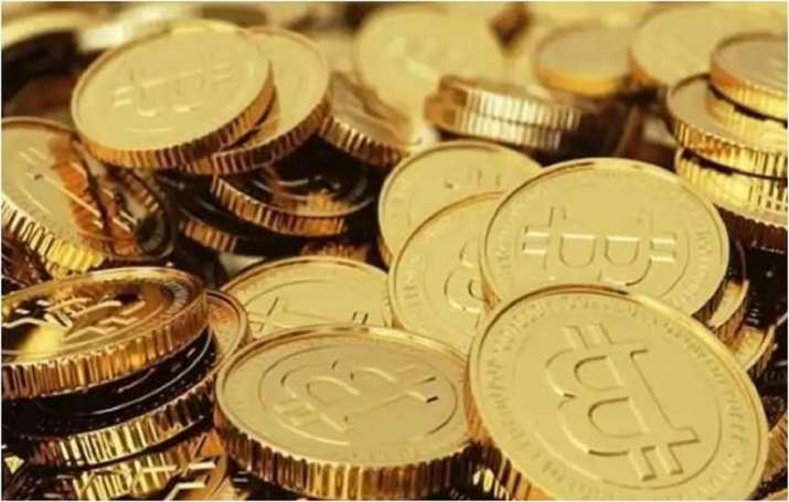 Kingpin of bitcoin scam worth Rs 485 crore murdered by