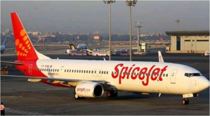 SpiceJet pilot suspended