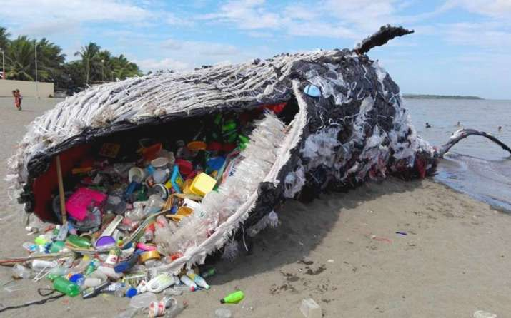 India Tv - A whale beached on the shore of the Philippines with plastic waste in its stomach.