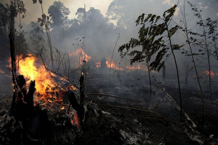 Amazon fire: 7 nations sign forest protection pact