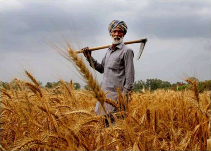 RBI panel pitches for federal body like GST Council in farm