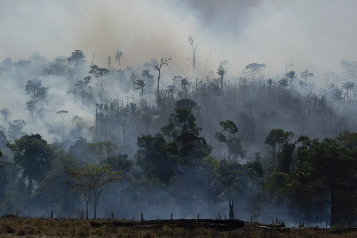 India Tv - Amazon fire: 7 nations sign forest protection pact