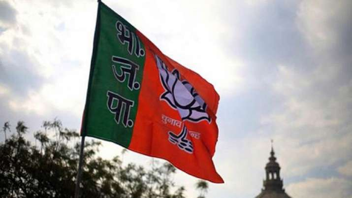 BJP MPs replace Cong leaders as heads of 2 parliamentary