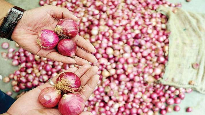 Govt prohibits export of onions with immediate effect