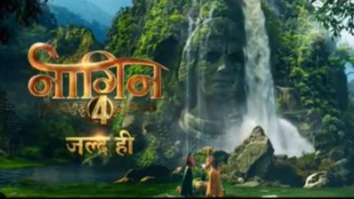 Naagin 4 Teaser Tv News: On Sunday, when fans were eagerly waiting for Salman Khan's Bigg Boss 13 pr