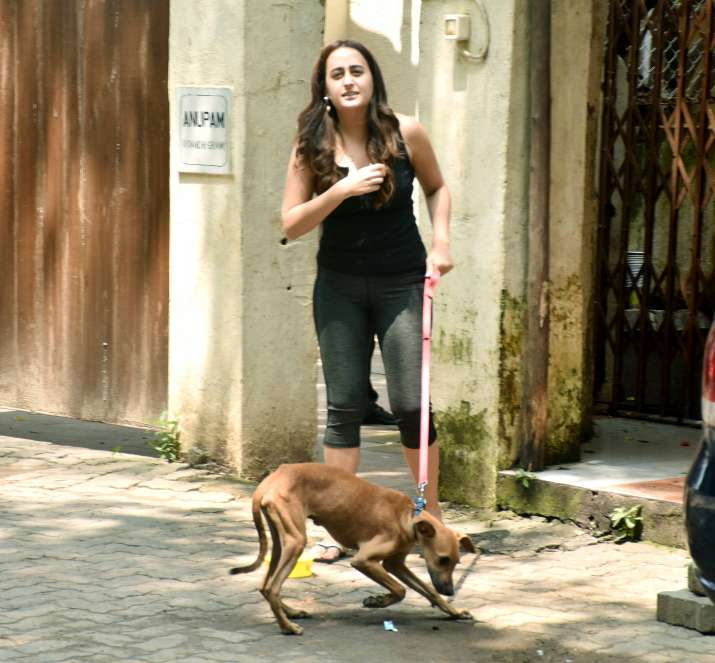 India Tv - Varun Dhawan's girlfriend Natasha Dalal rescued a dog in Mumbai