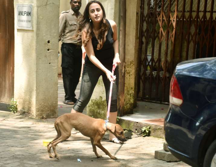 India Tv - Varun Dhawan's girlfriend Natasha Dalal with a stray dog