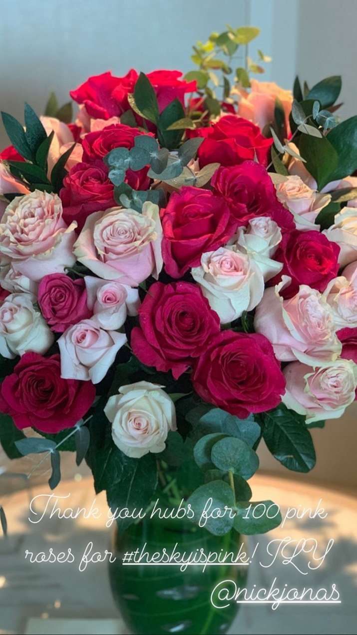 India Tv - 100 Pink Roses Sent By Nick Jonas