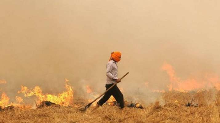 This official pens songs to stop stubble burning in Punjab