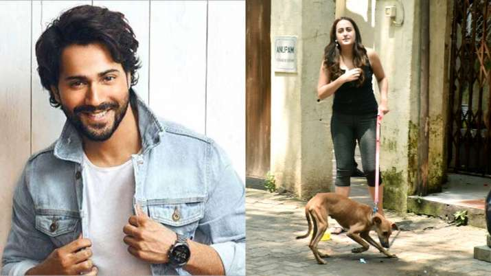 Varun Dhawan clears the air about hilarious reports of girlfriend Natasha Dalal's pet