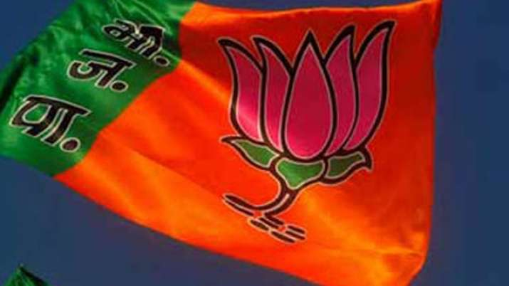BJP consolidates OBC base in UP Assembly by-polls