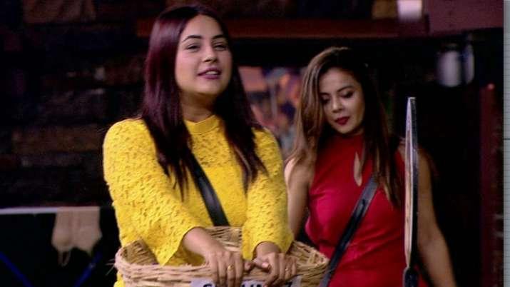 Bigg Boss 13 Oct 23: Devoleena slaps Shehnaaz Gill