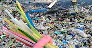 India Tv - Plastic straws cause a lot of pollution.