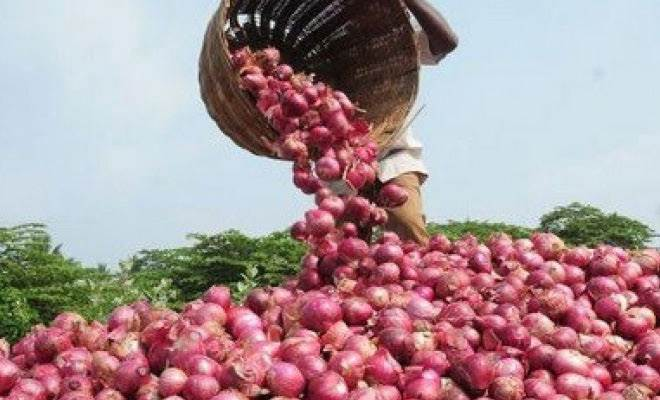 Onion prices shoot up to Rs 80/kg: Govt to facilitate