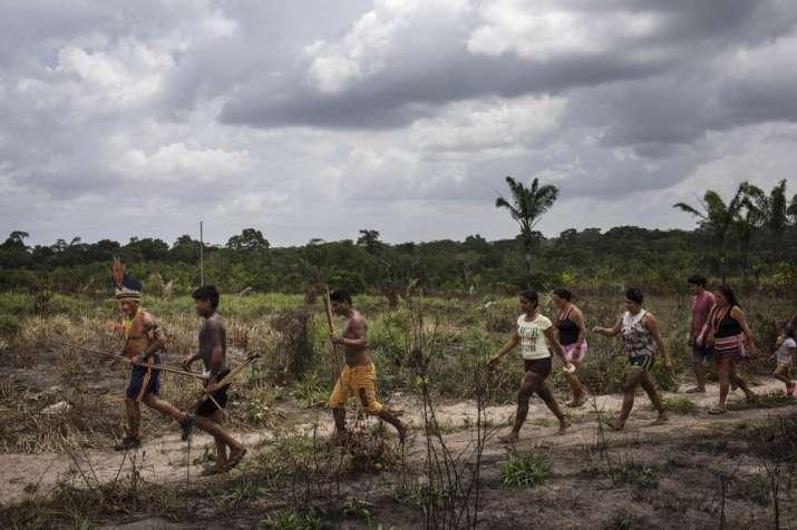 India Tv - The daily life of Amazon Tembe tribe