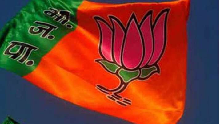 BJP jharkahnd assembly polls