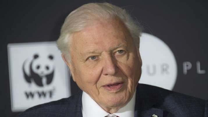 Naturalist and broadcaster David Attenborough to get Indira Gandhi Peace Prize for 2019