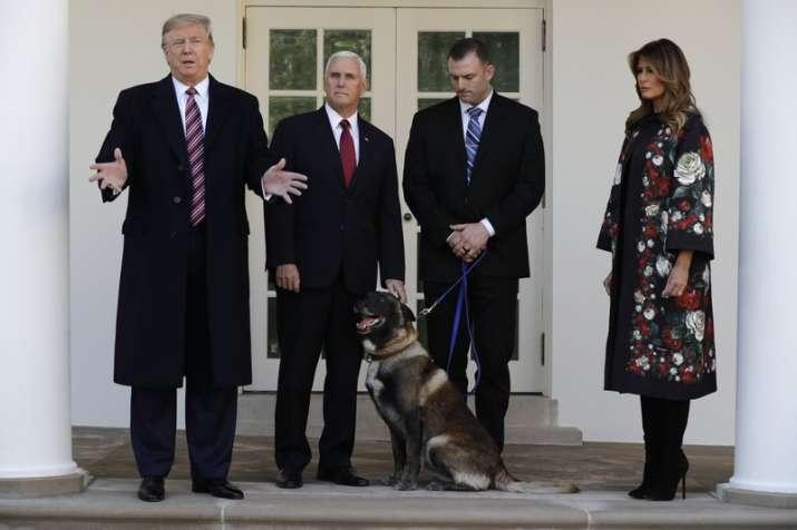 At White House, Trump honors dog injured in al-Baghdadi