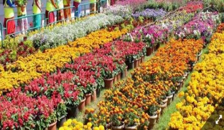 Bengaluru airport ships 41,444 kg marigolds to Dubai