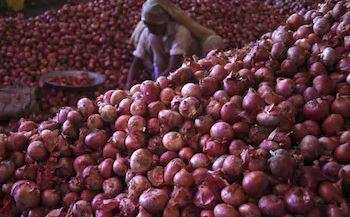 Govt to import 1 lakh tonnes onion to check price rise