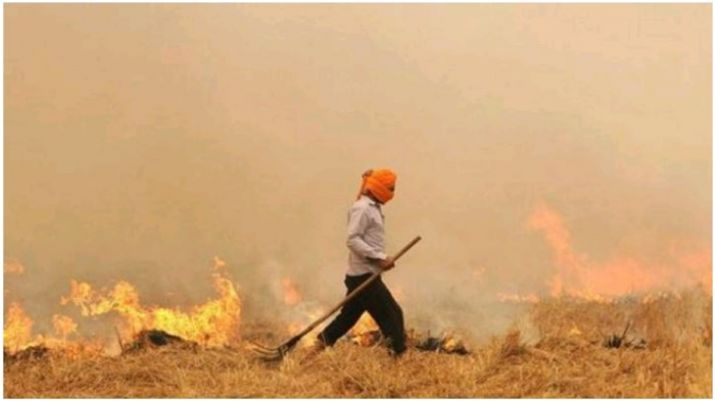 Punjab, the epicentre of crop burning fires, sees low