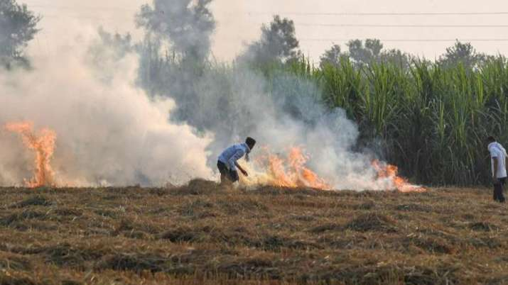 Punjab, Haryana farmers caught in vicious time-cycle web.