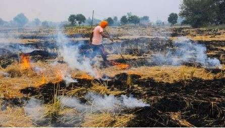Comply with rules related to stubble burning: UP chief secy