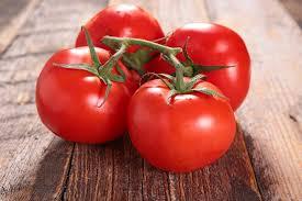 India Tv - Tomatoes