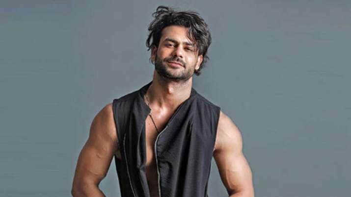 vishal aditya singh bigg boss13