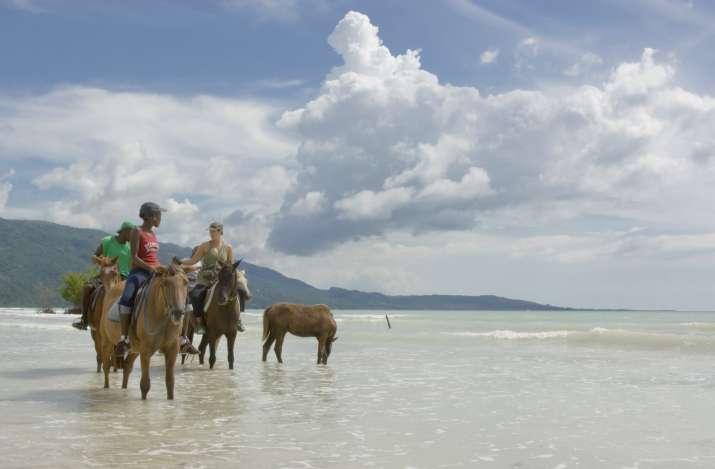 India Tv - Horseback riding in the ocean