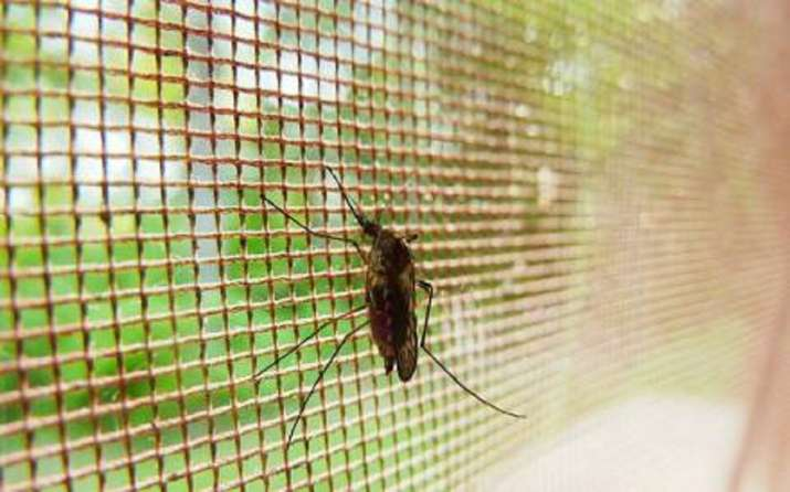 Chemically treated mosquito nets to fight Malaria in Manipur
