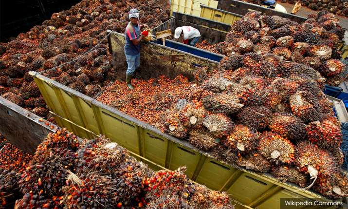 Palm Oil Imports: 30,000 tonnes of palm oil stuck at Indian