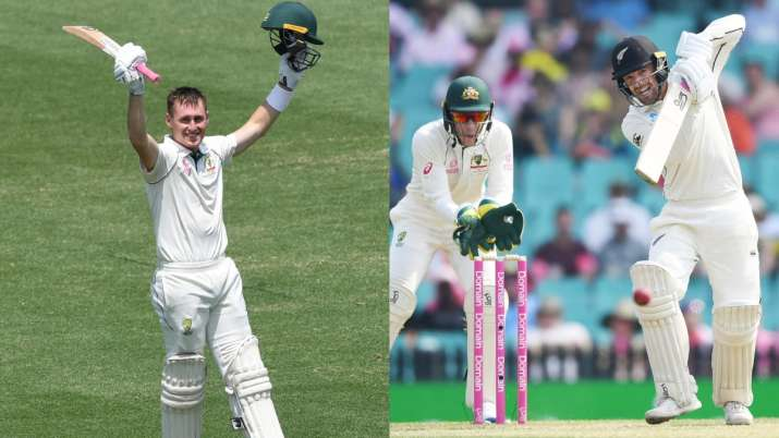 3rd Test: New Zealand openers show grit after Labuschagne's double century on Day 2
