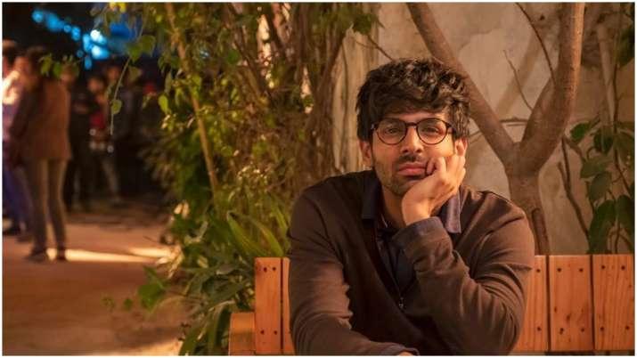 Kartik Aaryan introduces his other half Veer from Love Aaj Kal, see pic