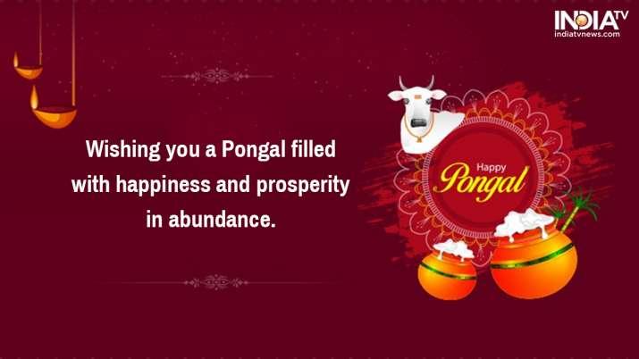 India Tv - Pongal 2020