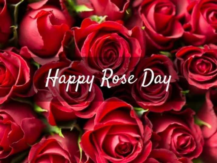 Valentine S Day 2020 Date Sheet Celebrate Rose Day Kiss Day Propose Day With Your Loved One On These Dates Relationships News India Tv