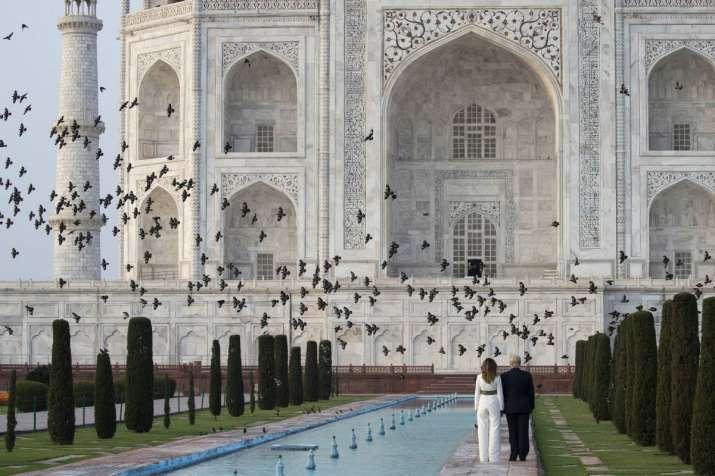 India Tv - Birds fly as President Donald Trump with first lady Melania Trump tour the Taj Mahal