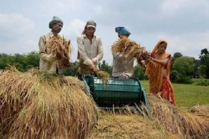 BJP stages protest over farm loan waiver, women's safety