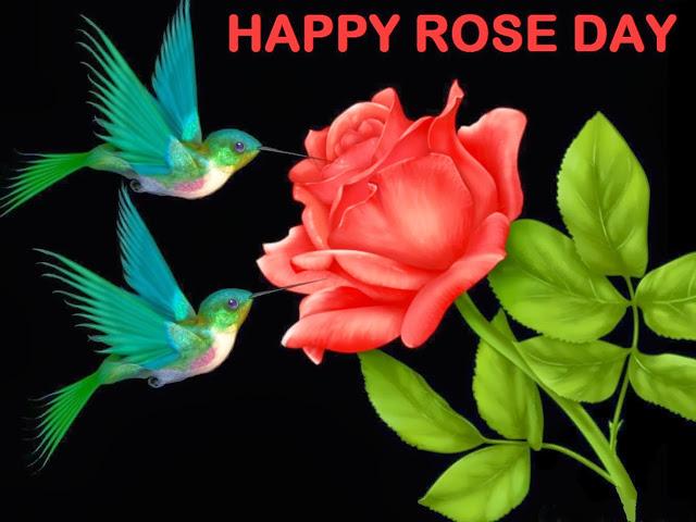 India Tv - Happy Rose Day Image