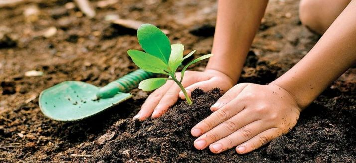 ICRISAT launches new facility to accelerate plant life-cycle
