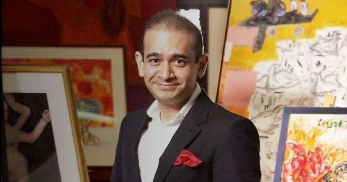 NCLT Mumbai orders liquidation of Nirav Modi's scam-hit firm