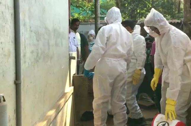 Kerala govt orders poultry culling after Bird flu detected