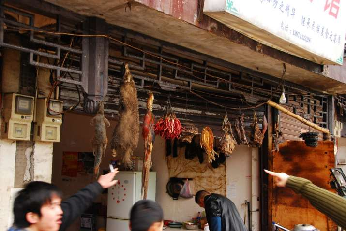 photos  a look at huanan wet market in china  where