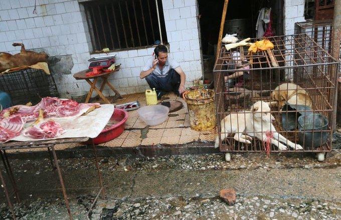 India Tv - Huanan wet market in China