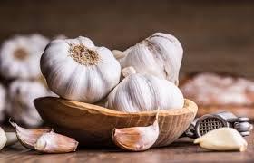 India Tv - Garlic