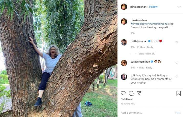 India Tv - Pinkie Roshan shares a cute picture of climbing a tree on instagram
