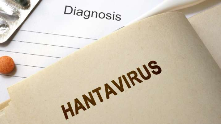 How is hantavirus different from coronavirus: As if coronavirus wasn't enough, people are now in fea
