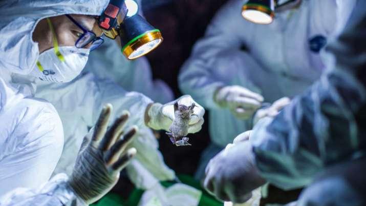 coronavirus health update march 26  covid
